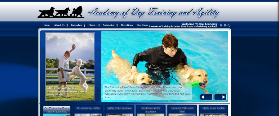 The Academy of Dog Training and Agility