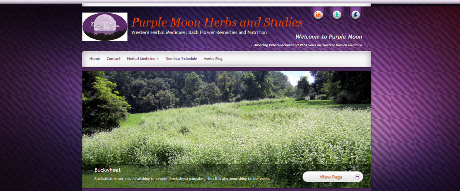 Purple Moon Herbs and Studies